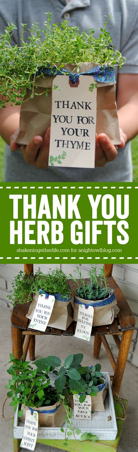 thank you herb gifts a owl