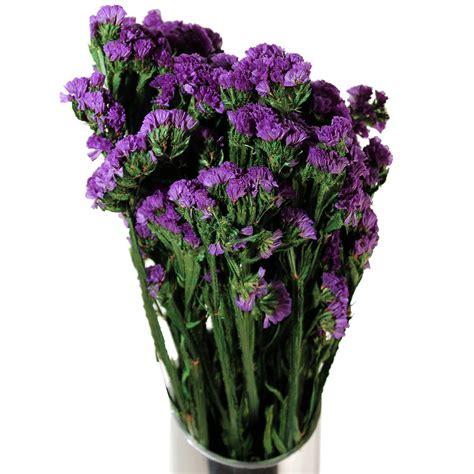 Preserved Flowers   Statice Sinuata   Purple