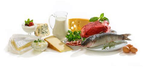 alimenti con piu proteine gli alimenti pi 249 ricchi di proteine