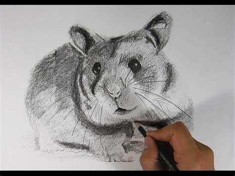 imagenes no realistas faciles de dibujar c 243 mo dibujar un h 225 mster realista a l 225 piz how to draw a