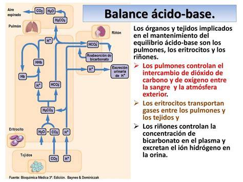 el resultado resumen de los clculos de la tabla control del equilibrio 225 cido base ppt descargar