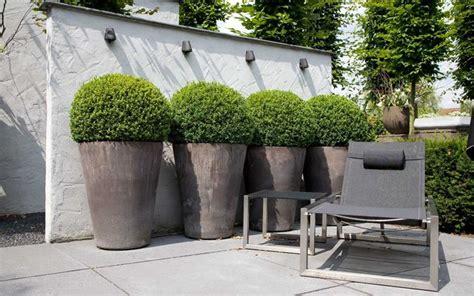 vasi per balconi vasi per balconi vasi da giardino scegliere i vasi per