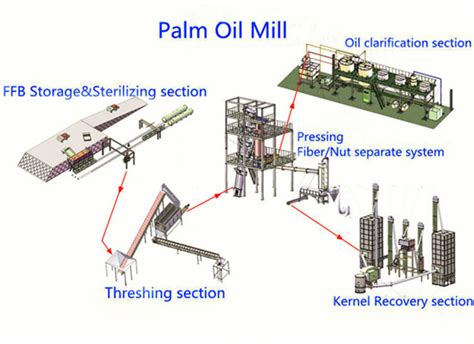 Bussines Opportunity On Palm Industry business opportunities in the palm production in nigeria manufacturer of vegetable
