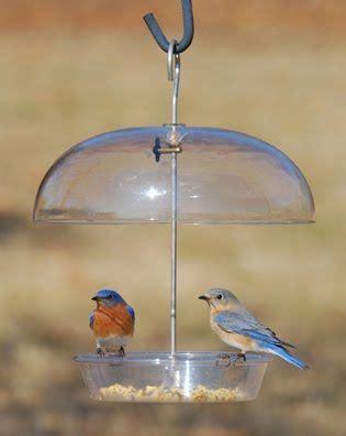 1000 ideas about wild birds unlimited on pinterest wild