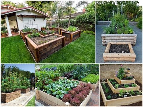 best vegetables to grow in raised beds grow your vegetables in raised garden beds