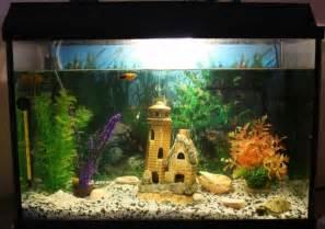 aquarium dekoration beispiele fisch aquarium selber einrichten und dekorieren