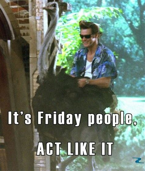 Ace Ventura Meme - 48 best ace ventura images on pinterest comedy comedy