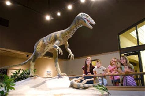dinosaurs with special reference to the american museum collections books dinosaur hoax dinosaurs never existed