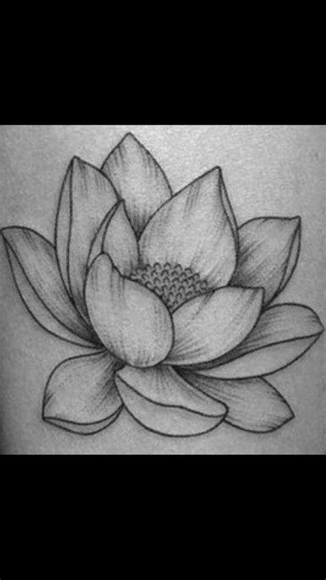 drawing of lotus flower lotus flower drawing cool lotus flower