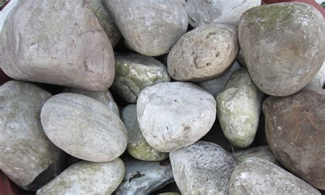 rocks  pebbles living props