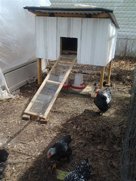 backyard poultry production 41 best backyard farming chicken coops nesting boxes