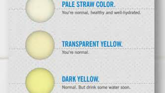 what color should urine be what the colour of your says about your health