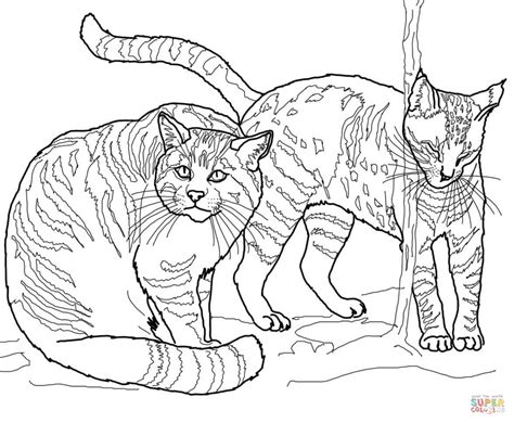 coloring pages wild cats european wildcats coloring page free printable coloring