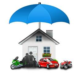 tmt insurance
