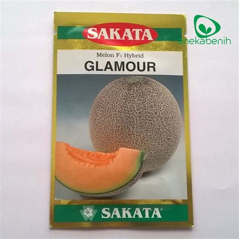 Melon Honeydew Orange 10 Benih jual benih melon orange sakata quot quot hidroponik shop