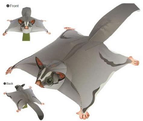 Animal Papercraft - sugar glider papercraft animal paperkraft net free