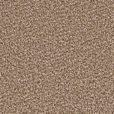Home Decorators Carpet by Home Decorators Collection Carpet Sle Palace I