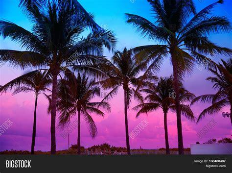 South Florida Detox Sunset by Miami South Sunset Palm Image Photo Bigstock