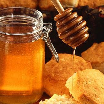 Madu Hutan Hitam 100 Madu Asli 490 Gram cara membedakan madu asli dan palsu pendidikan dan iptek