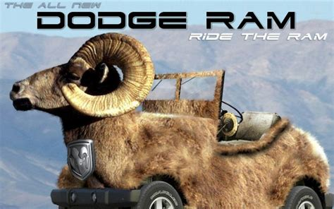 Rams Memes - 25 funny anti dodge memes that ram owners won t like