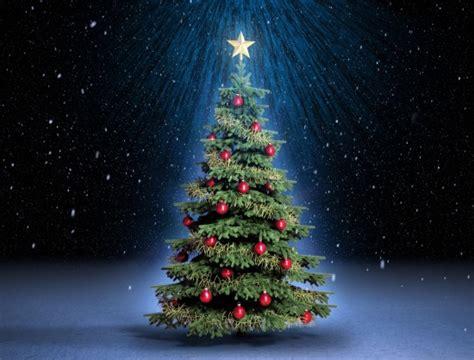 193 rbol de navidad ent 233 rese sobre el origen de esta