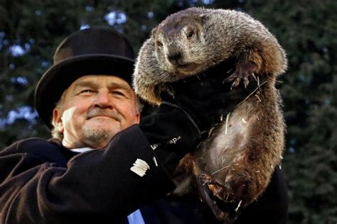 groundhog day one day phil predicts 6 more weeks of winter harsh cold snow