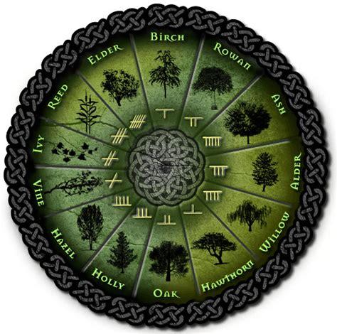 Celtic Tree Calendar The Celtic Tree Calendar By Michael Vescoli Place Of Ash
