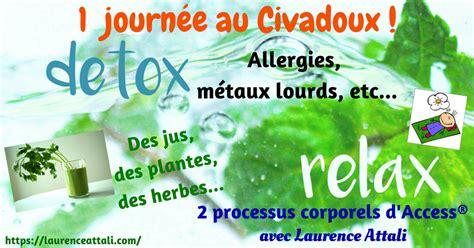 Access Detox by Journ 233 E D 233 Tox Avec Access 174 Neo Bien 234 Tre