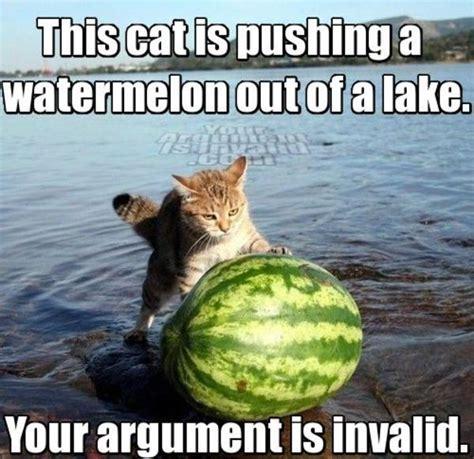 Your Argument Is Invalid Meme - image 2763 your argument is invalid know your meme