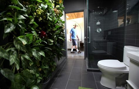 plants for dark bathroom 12 creative ways to use plants in the bathroom
