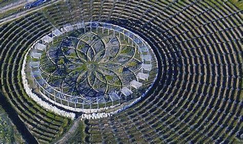 lavender labyrinth michigan this giant lavender labyrinth in michigan will captivate