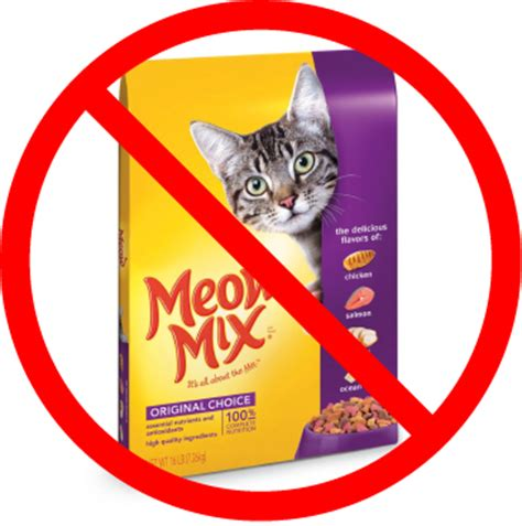 best food brands best food for cats cats