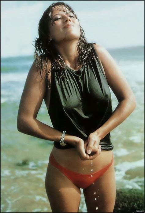 very beautiful in french ngacir wallpapers sophie marceau hot wallpapers