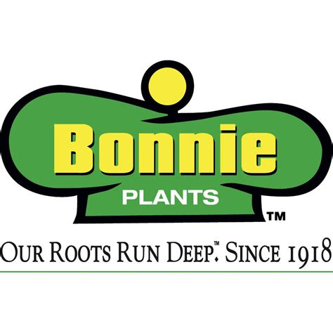 Plants That Grow In Dark Rooms by Sponsoring A Stay In The Windy City Bonnie Plants