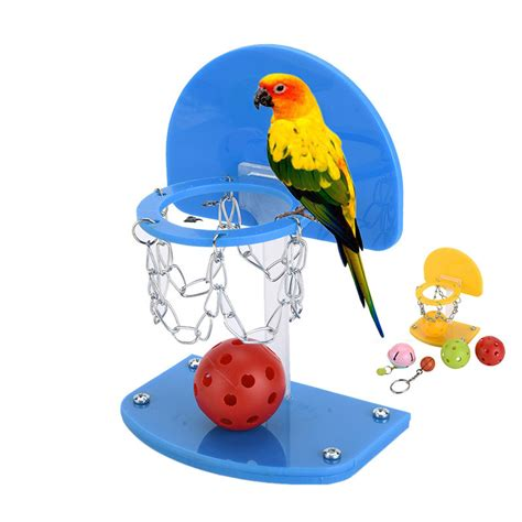 online buy wholesale pet birds for sale from china pet