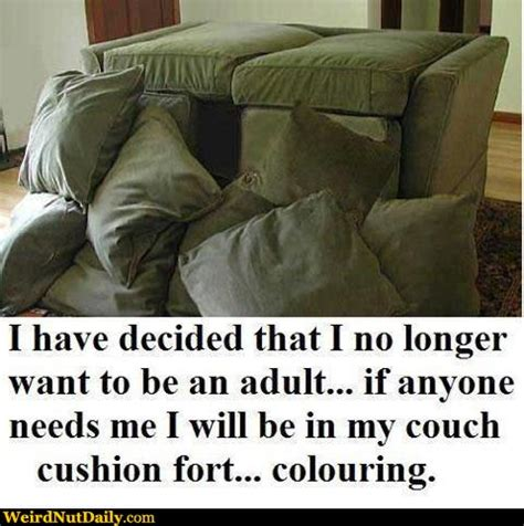my couch funny pictures weirdnutdaily my couch cushion fort