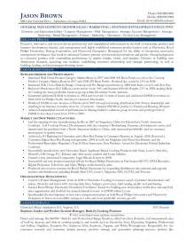 Business Development Manager Resume Sles by Sle Cv For Business Development Director