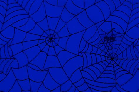 pattern web background spider web pattern free stock photo public domain pictures