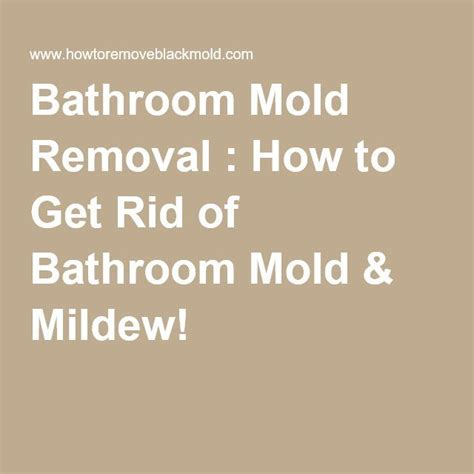 How To Get Rid Of Mold In The Bathroom Walls by Best 25 Bathroom Mold Ideas On Mold In