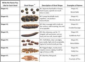 Bristol Stool Chart For by Secondary Infection Poisoned By Stalkers
