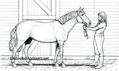 coloring pictures of dogs and horses unique coloring pages of dogs and horses best coloring pages