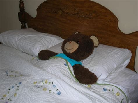 sleeping in my bed build a bear page i built a quot bear quot page