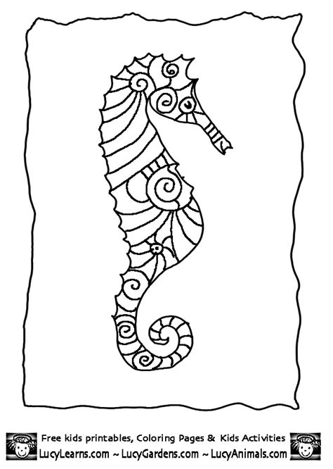 seahorse coloring page seahorse coloring page coloring home