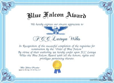 2014 blue falcon stolen valor tournament second round blue falcon certificate template gallery certificate