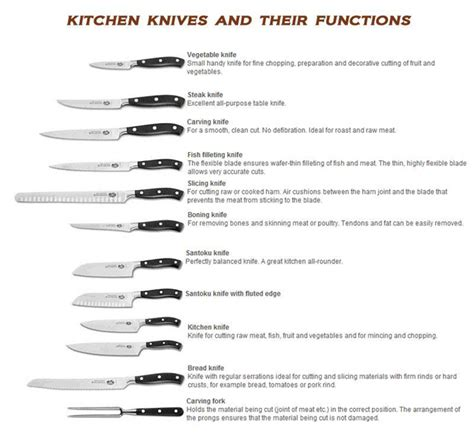 different types of kitchen knives and their uses knife terminology knife use and parts descriptions
