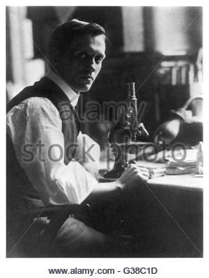 alexander fleming 1881 1955 artifact free alexander fleming 1881 1955 scottish bacteriologist modern