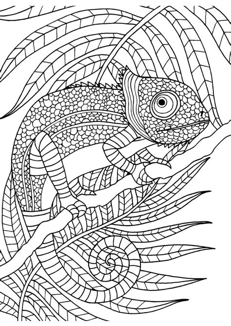 art pattern sheet 1086 best adult colouring animals zentangles images on