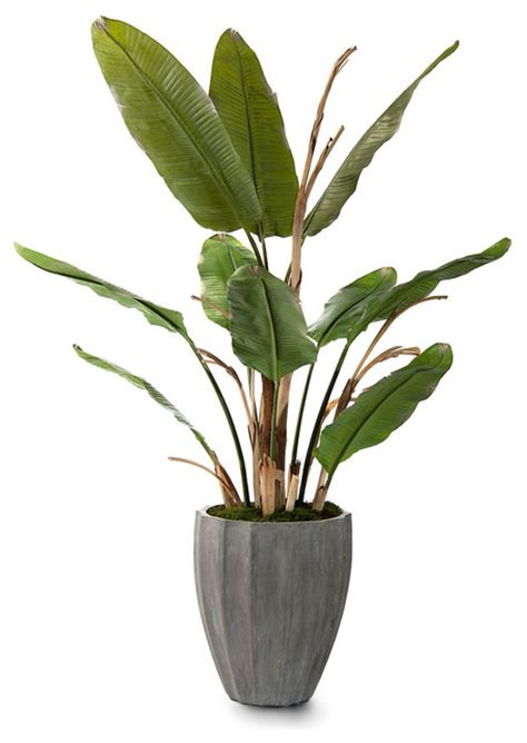 artificial tropical plants and trees new banana tree botanical tropical artificial flowers