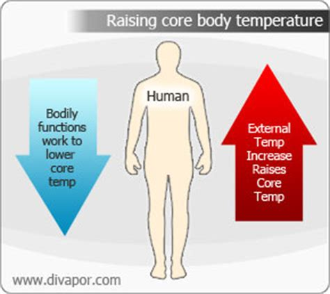 room temperature water benefits health benefits of a steam room