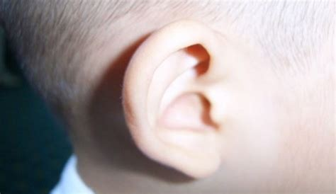 antibiotics for ear infection antibiotics for ear infections prescribed less antibiotic overuse rates declining